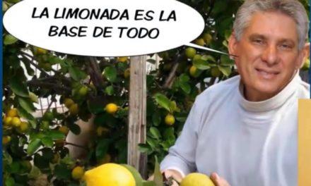 LOS MEMES DE LA LIMONADA ES LA BASE DE TODO