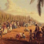 Esclavos cubanos comían mejor que hoy sus tataranietos